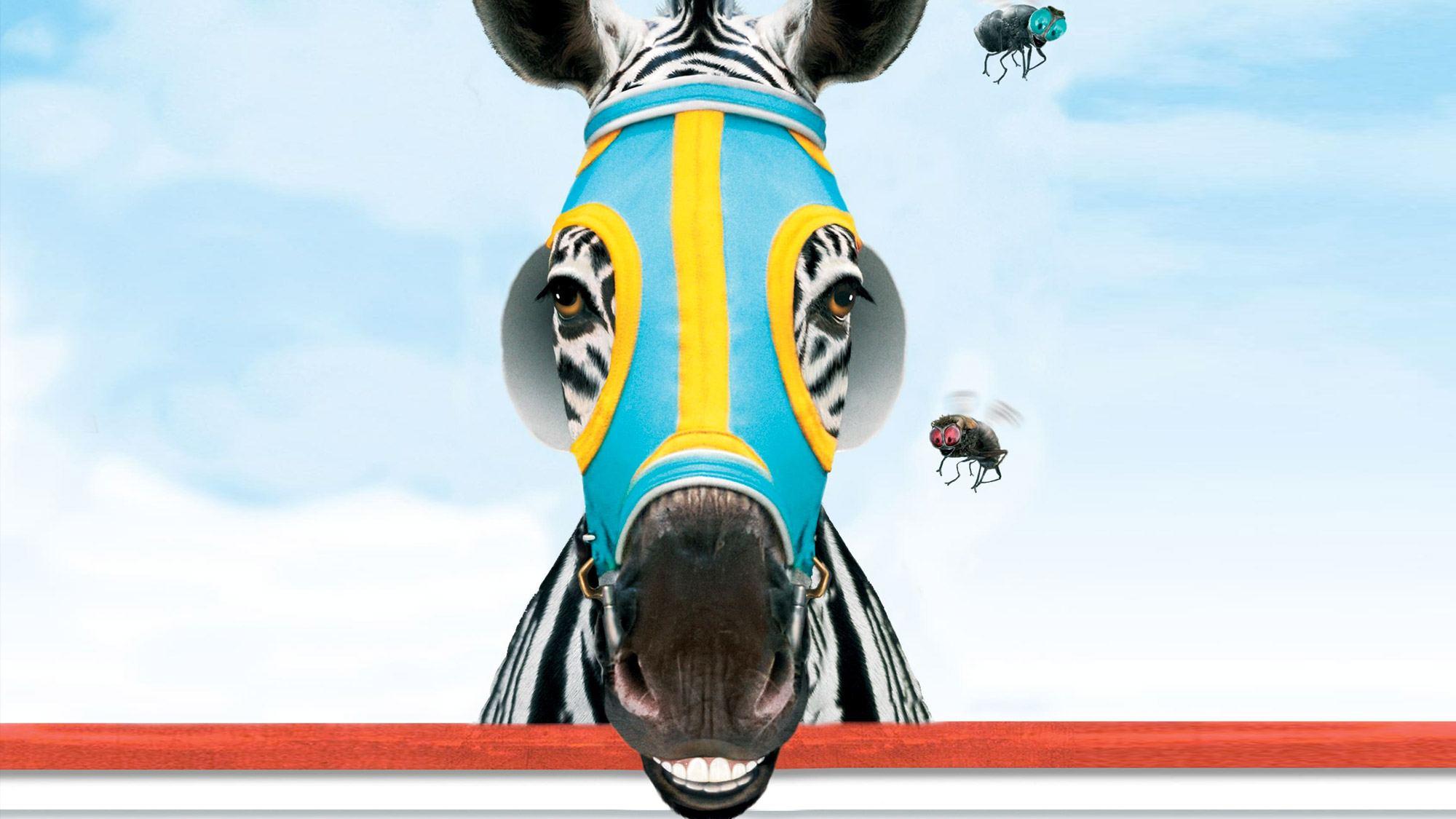 <em>Racing Stripes</em> : la bande-annonce !