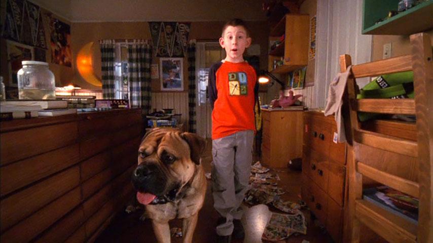 Saison 3, épisode 17 « Une vie de chien »